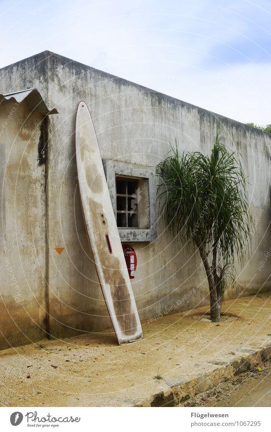 Surfschule in Nordkorea Ferien & Urlaub & Reisen Tourismus Ausflug Abenteuer Freiheit Sport tauchen Surfen Surfer Surfbrett Schneidebrett Windsurfing Windsurfer