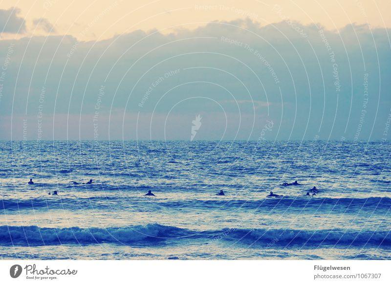 Wellenreiter Mensch Natur Ferien & Urlaub & Reisen Sommer Meer Ferne Freiheit Schwimmen & Baden Wellen Tourismus Ausflug genießen Abenteuer Seeufer Sommerurlaub Menschenmenge