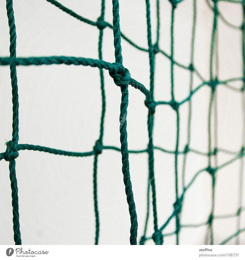 networking grün weiß Partnerschaft Schlaufe Seil netzartig Karriere Fischereiwirtschaft Gesellschaft (Soziologie) Kommunizieren Sport Spielen Ballsport Netz