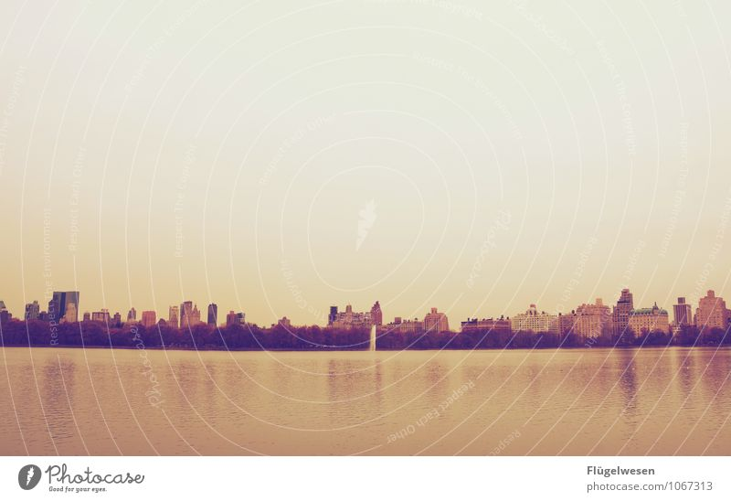 Central Park Freiheit Sightseeing Städtereise Winter Skyline Sehenswürdigkeit Schwimmen & Baden Romantik USA New York City Amerika Fluss See Hochhaus