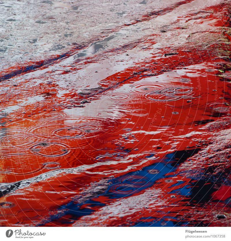 NYC Lights 23 Sightseeing Städtereise Nachtleben Unwetter Regen Stadtzentrum Skyline überbevölkert Hochhaus leuchten Farbstoff Farbenspiel mehrfarbig Pfütze