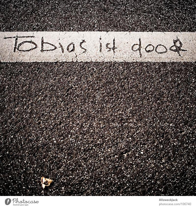 Streetart Asphalt Streifen Fahrbahn schwarz grau weiß Ärger Straßenkunst Kunst Kunsthandwerk Verkehrswege Kommunizieren begrenzungslinie tobias ist doof