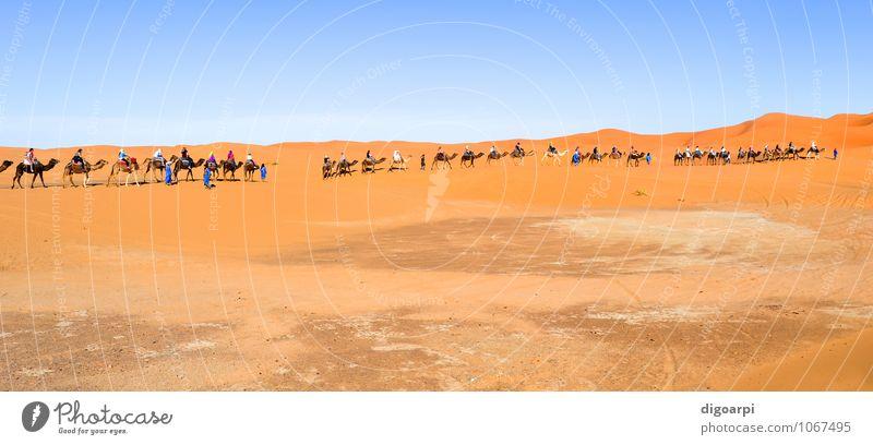 Kamelkarawane Ferien & Urlaub & Reisen Tourismus Abenteuer Sommer Sonne Mensch Natur Landschaft Sand Himmel Horizont Wärme Hügel heiß blau gelb Afrika