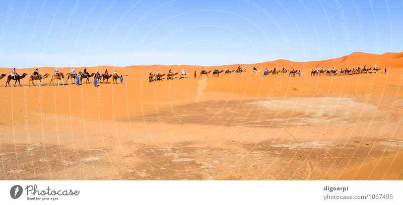 Mensch Himmel Natur Ferien & Urlaub & Reisen blau Sommer Sonne Landschaft gelb Wärme Sand Horizont Tourismus Abenteuer Hügel heiß