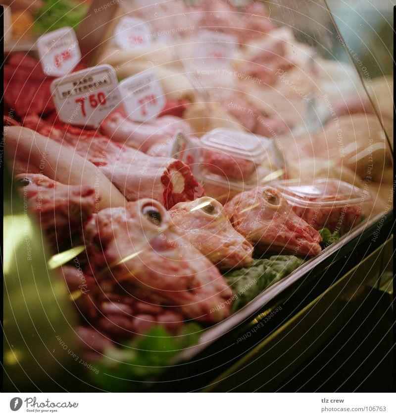 fleisch Ernährung Lebensmittel Spanien Fleisch Markt Barcelona Totes Tier