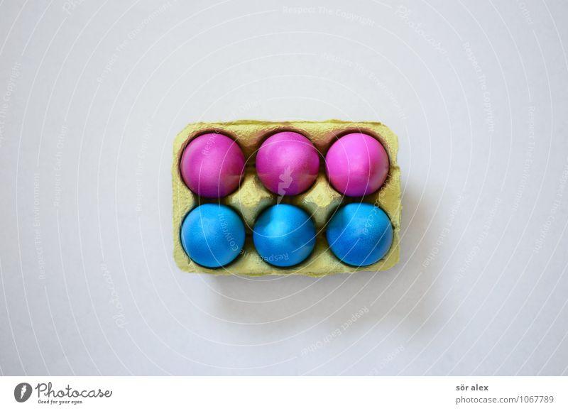 Six-Pack Lebensmittel Ei Frühstück Feste & Feiern Ostern blau rosa Osterei 6 Eierkarton Farbfoto Innenaufnahme Textfreiraum links Textfreiraum rechts