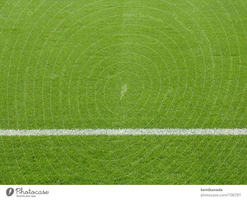 Rasenteppich Sport Wiese Gras Frühling Linie Fußball Rasen Halm gerade Textfreiraum Fußballplatz Kalk Ballsport gepflegt Sportstätten Spielfeldbegrenzung