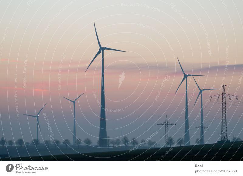Dämmerung Energiewirtschaft Erneuerbare Energie Windkraftanlage Landschaft Sonnenaufgang Sonnenuntergang Sonnenlicht Feld Windrad Strommast Stromkraftwerke rosa