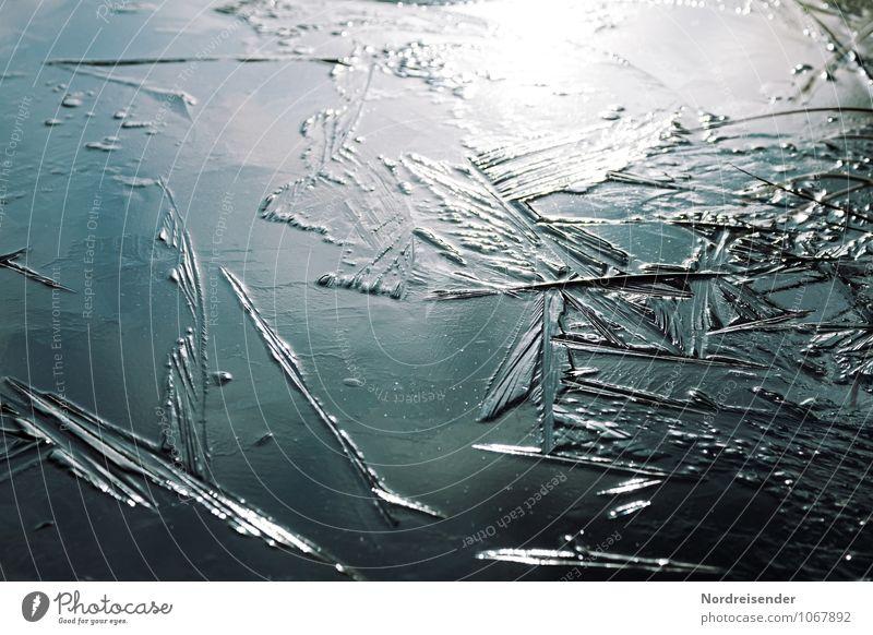 Trash 2015 | Eisfläche Natur Urelemente Wasser Winter Klima Frost Teich See Ornament frieren glänzend eckig kalt blau bizarr stagnierend Wandel & Veränderung