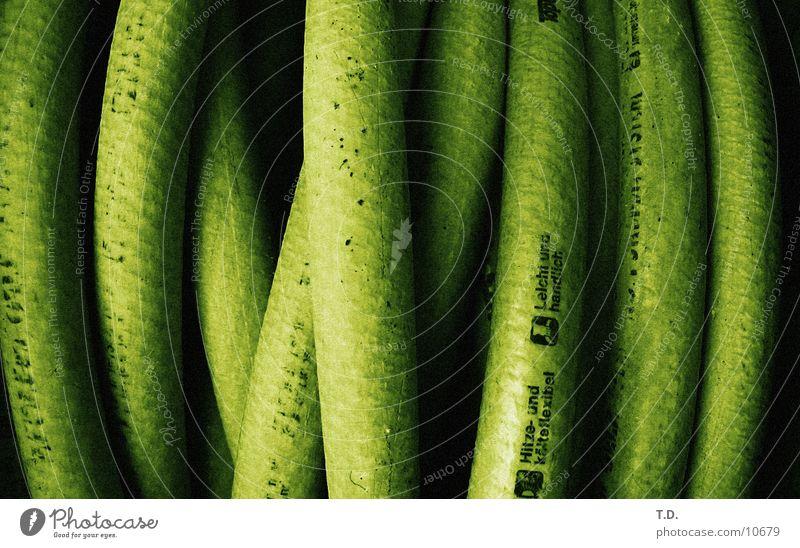 Schlauchsalat grün Garten nass rund beweglich gießen Schlauch Fototechnik