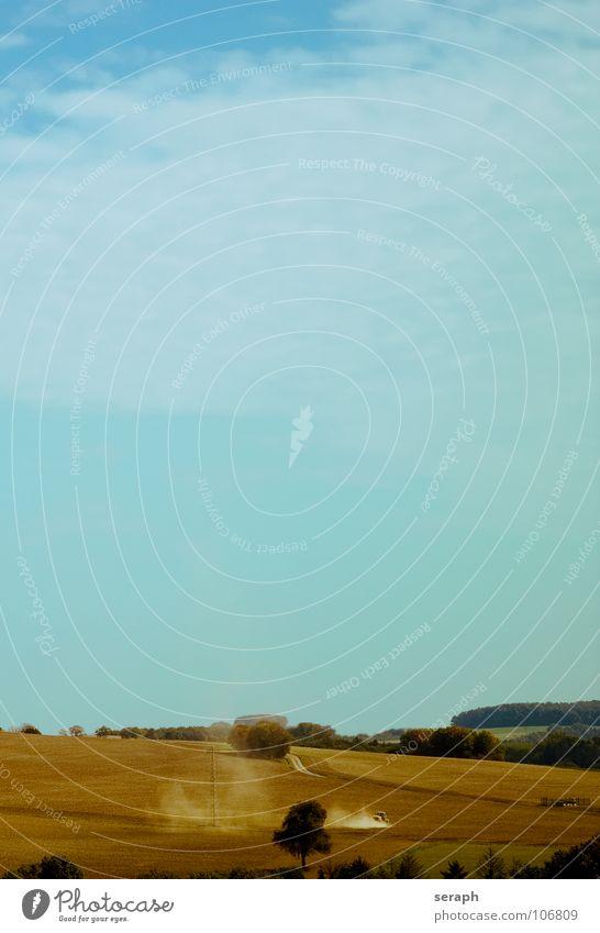 Pflügen Feld Feldarbeit Pflug pflügen Landwirtschaft ökologisch Staub Staubwolke Hügel Arbeit & Erwerbstätigkeit Umwelt Horizont Traktor Wirtschaftsbetrieb