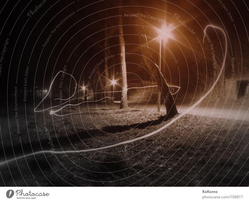 Das Licht im Park Nacht Einsamkeit Vergänglichkeit schwarz rot weiß weich Gefühle Schwarzweißfoto Herbst Light alone Bewegung Schatten frei free ruhig spieglung