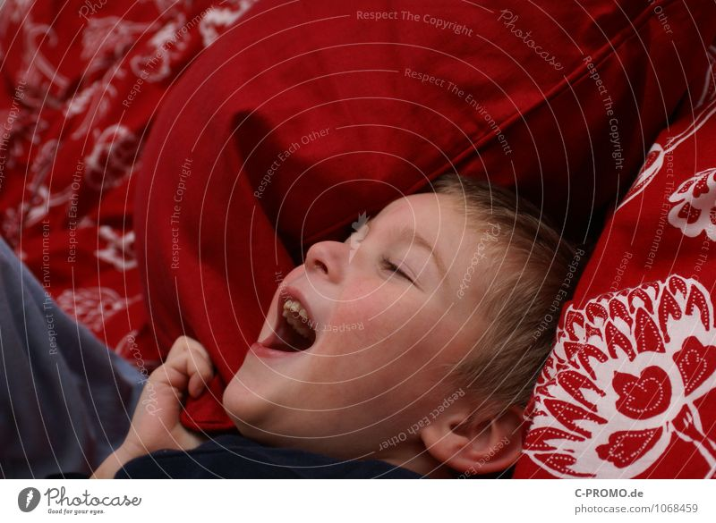 Lachender Junge im Bett Mensch maskulin Kind Kindheit 1 1-3 Jahre Kleinkind 3-8 Jahre Bettwäsche Bettdecke Kissen lachen toben Fröhlichkeit Glück rot Freude