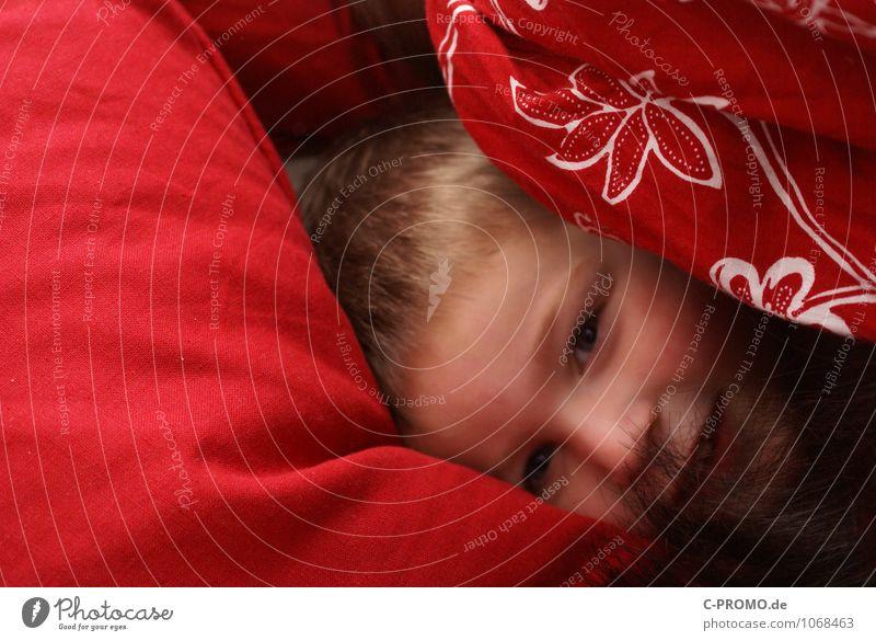 Junge eingekuschelt im Bett Mensch Kind Familie & Verwandtschaft Kindheit 1 1-3 Jahre Kleinkind 3-8 Jahre Bettwäsche kuschlig rot Freude Glück Fröhlichkeit