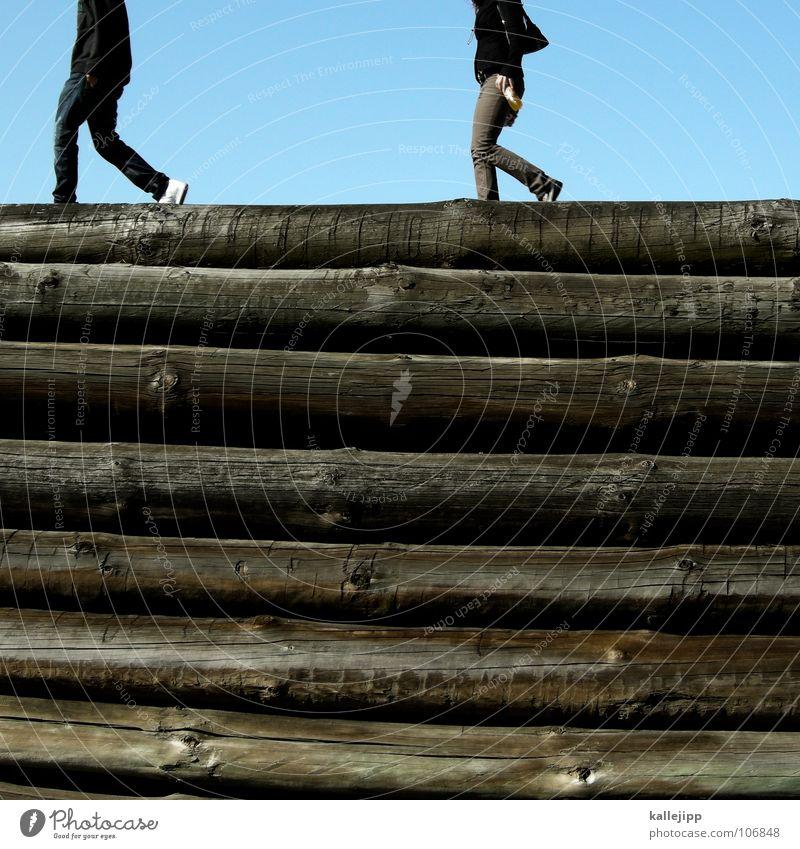der letzte gang Baum Tod Holz Beine gehen Hoffnung Trauer Baumstamm gruselig Verzweiflung Lager Stapel horizontal Brandenburg Befestigung Opfer