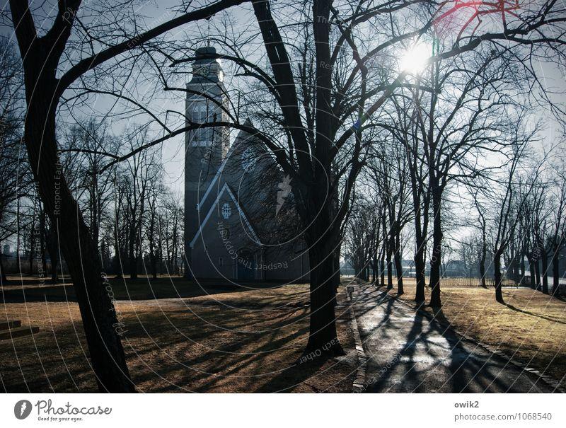 Falkenberg/Elster Umwelt Natur Wolkenloser Himmel Horizont Sonne Klima Wetter Schönes Wetter Baum Zweig Park Kleinstadt Kirche Bauwerk Gebäude Architektur