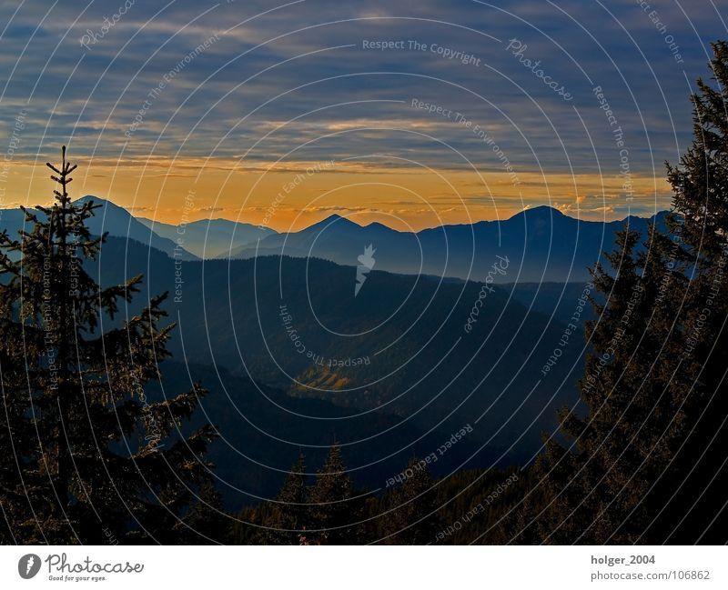 Abendstimmung Natur Himmel Baum Wolken Berge u. Gebirge Landschaft Abenddämmerung Nadelbaum