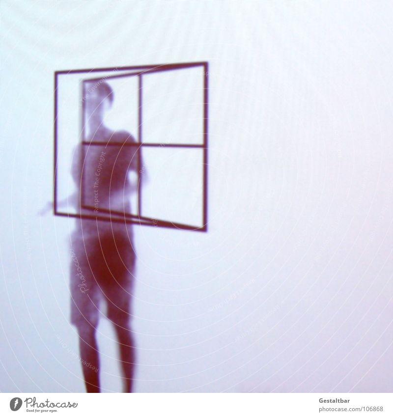 Schattenspiel 10 Frau feminin Silhouette schließen Fensterkreuz Luft lüften geheimnisvoll stehen Haus gestaltbar Ausstellung Projektionsleinwand Bewegung