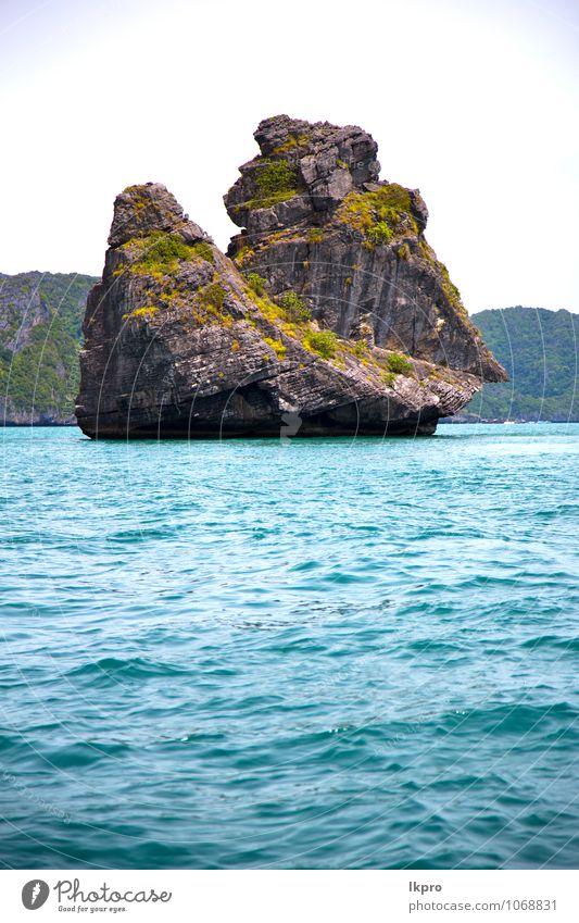 Himmel Natur Ferien & Urlaub & Reisen alt Pflanze blau grün Sommer Wasser Baum Landschaft Blatt Wolken Strand schwarz Umwelt