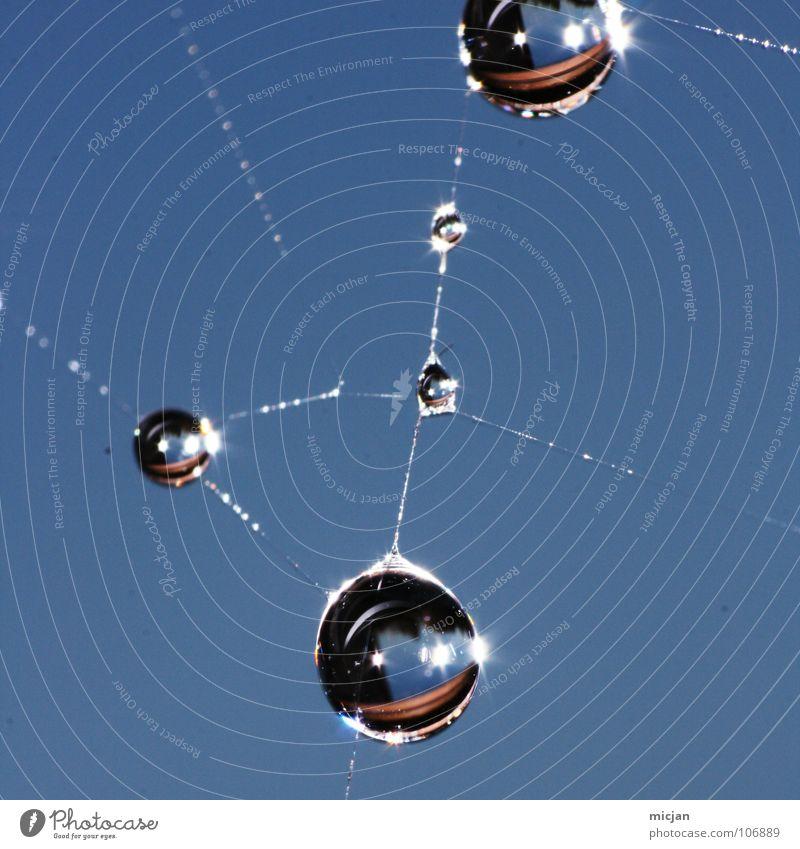 Toxic Wassertropfen Spinngewebe Spinnennetz netzartig Vernetzung Netzwerk Verbindung Knotenpunkt Linse Wasserspiegelung Atom Proton molekular Makroaufnahme