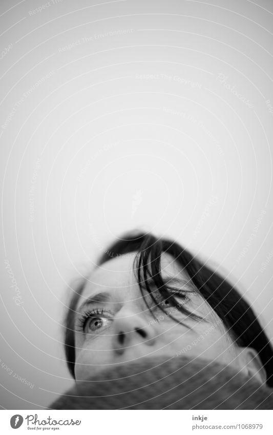 Grippewelle Lifestyle Stil Gesundheit Krankheit Frau Erwachsene Leben Gesicht 1 Mensch 30-45 Jahre Schal frieren Blick kalt Gefühle Traurigkeit Erholung