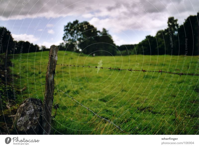 staket och landskap Himmel grün Baum Wolken Landschaft Wiese Stein offen Zaun Grenze Schweden Stacheldraht Stacheldrahtzaun weitläufig Sösdala Trennlinie
