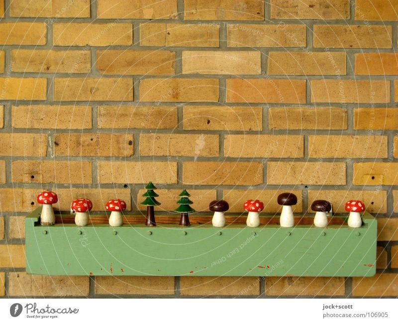 leichtes Spiel? schön Baum Freude Wand Mauer Spielen Linie Beginn Kreativität Pilz berühren retro Zeichen planen Kitsch Spielzeug