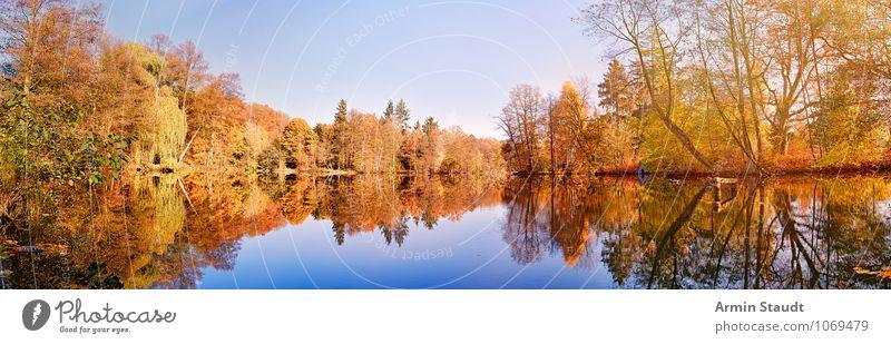 Herbstwald am See Himmel Natur blau Farbe Erholung Landschaft ruhig Ferne Wald Leben natürlich Stimmung Horizont Park