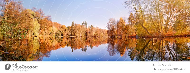 Herbstwald am See Leben Zufriedenheit Erholung ruhig Tourismus Ferne Natur Landschaft Himmel Horizont Klima Schönes Wetter Park Wald Seeufer fantastisch frisch