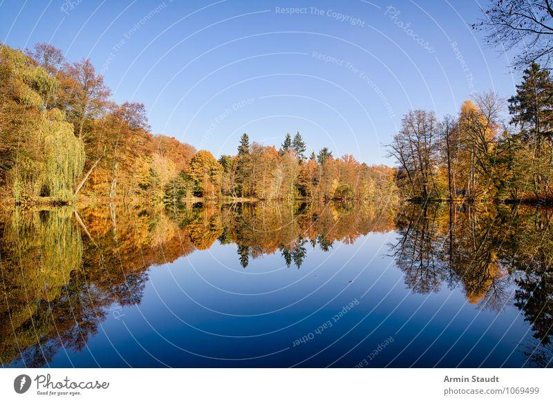 Herbstwald am See Himmel Natur blau Farbe Erholung Landschaft ruhig Ferne Wald Leben natürlich Glück Stimmung Horizont