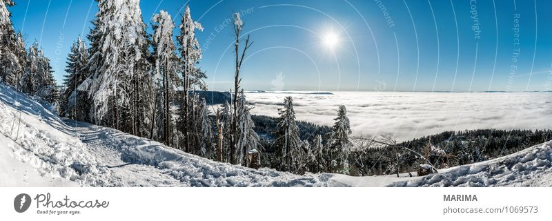 winter hike in the northern Black Forest on a sunny day ruhig Tourismus Sonne Winter Berge u. Gebirge Umwelt Natur Landschaft Wolken Baum Wald Hügel kalt grau