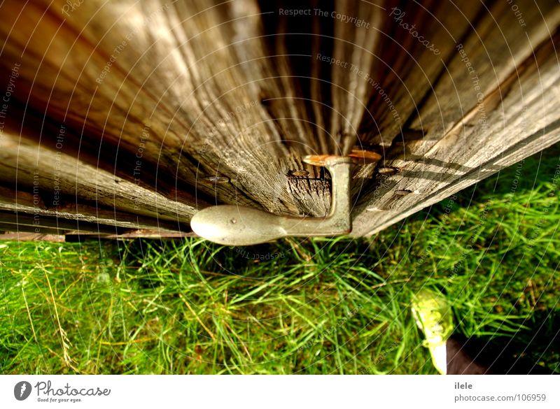 ... nur einen schritt entfernt blau grün gelb Wiese Gras Holz Garten braun Metall Tür Schuhe Hose Toilette Langeweile vertikal Katze