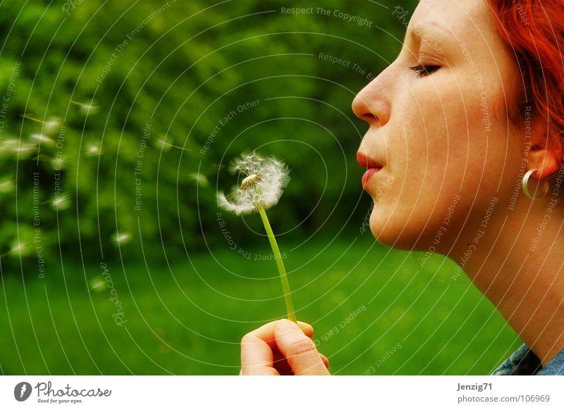 blow. Frau grün Sommer Gesicht Wiese Herbst fliegen Regenschirm Löwenzahn blasen Samen verteilen Porträt