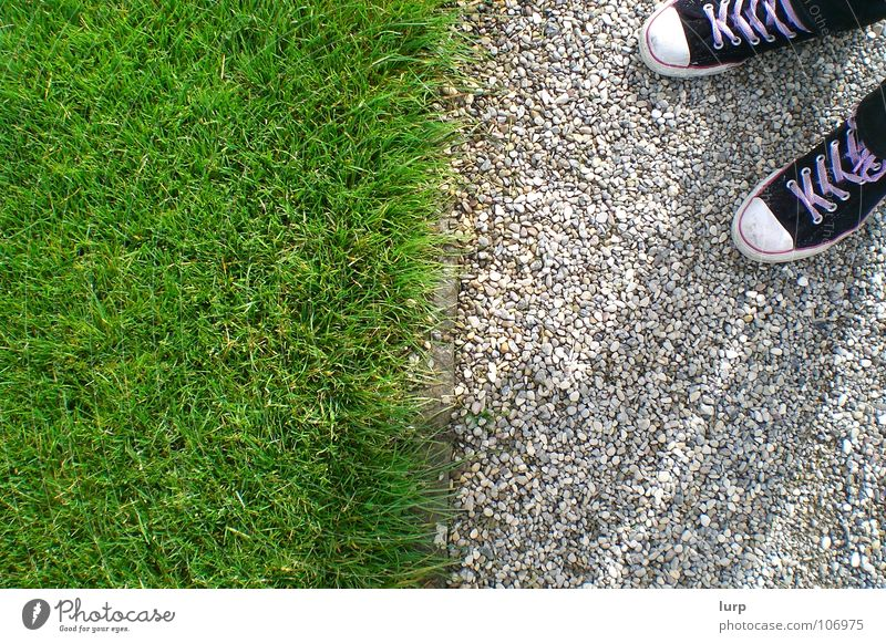 Should I go? Garten Gras Park Wiese Schuhe Stein unten Trennung Chucks Bürgersteig Kieselsteine Grenze Barriere Bildaufbau Schuhbänder Geometrie Hannover