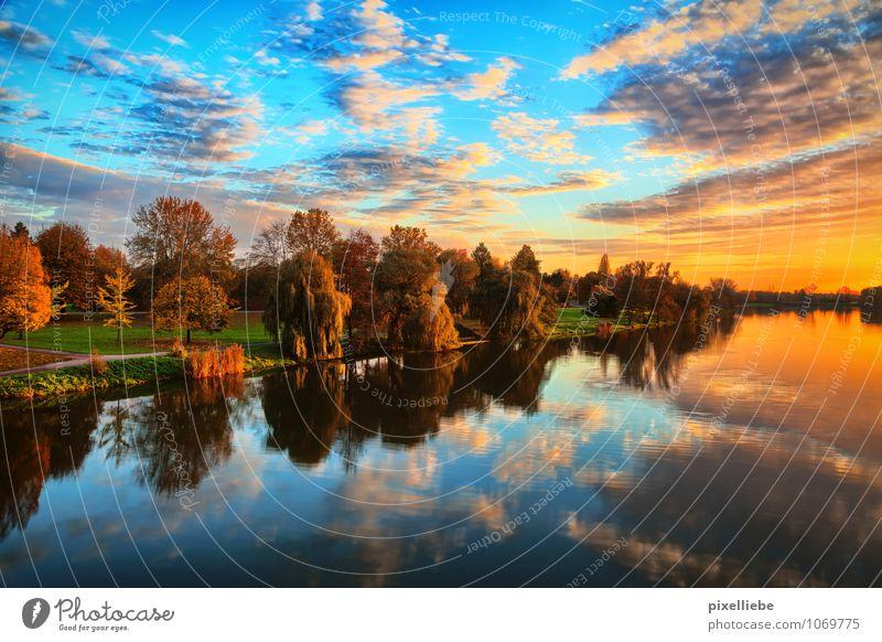 Aasee Münster elegant Schwimmen & Baden Ferien & Urlaub & Reisen Tourismus Ausflug Sightseeing Städtereise Sommer Sommerurlaub Natur Landschaft Wasser Himmel