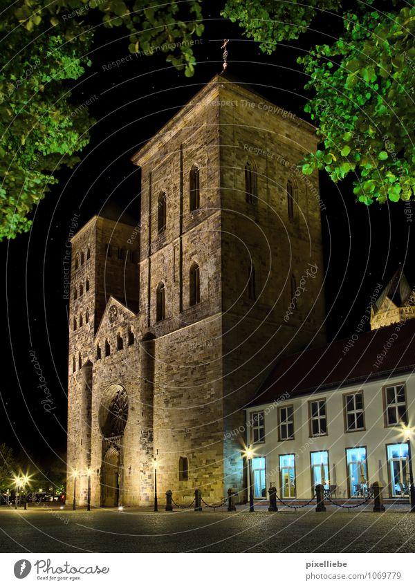 Dom St. Peter Osnabrück Stadt alt Sommer Baum Architektur Gebäude Religion & Glaube Design elegant Kirche Schönes Wetter Kultur Sehenswürdigkeit Gott