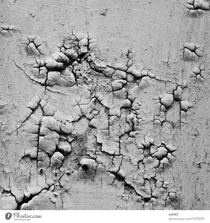 Wandzeitung alt Wand Mauer Hintergrundbild Fassade Arbeit & Erwerbstätigkeit Vergänglichkeit Wandel & Veränderung trocken Spuren Verfall Riss trashig Zerstörung Oberfläche abblättern