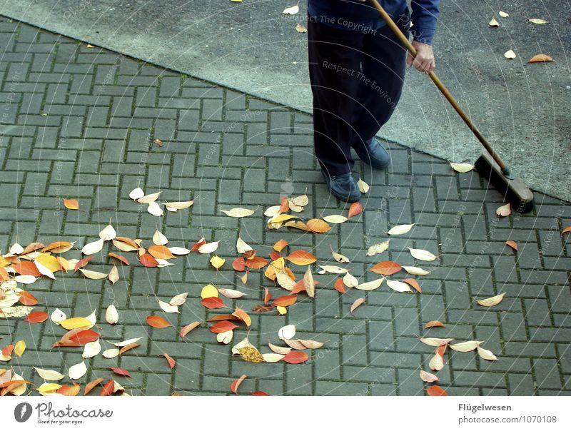 Straßenfeger 2 Blatt Herbst Sauberkeit Reinigen Bürgersteig Körperpflege Straßenbelag Herbstlaub herbstlich Parkplatz Herbstfärbung Herbstbeginn Besen