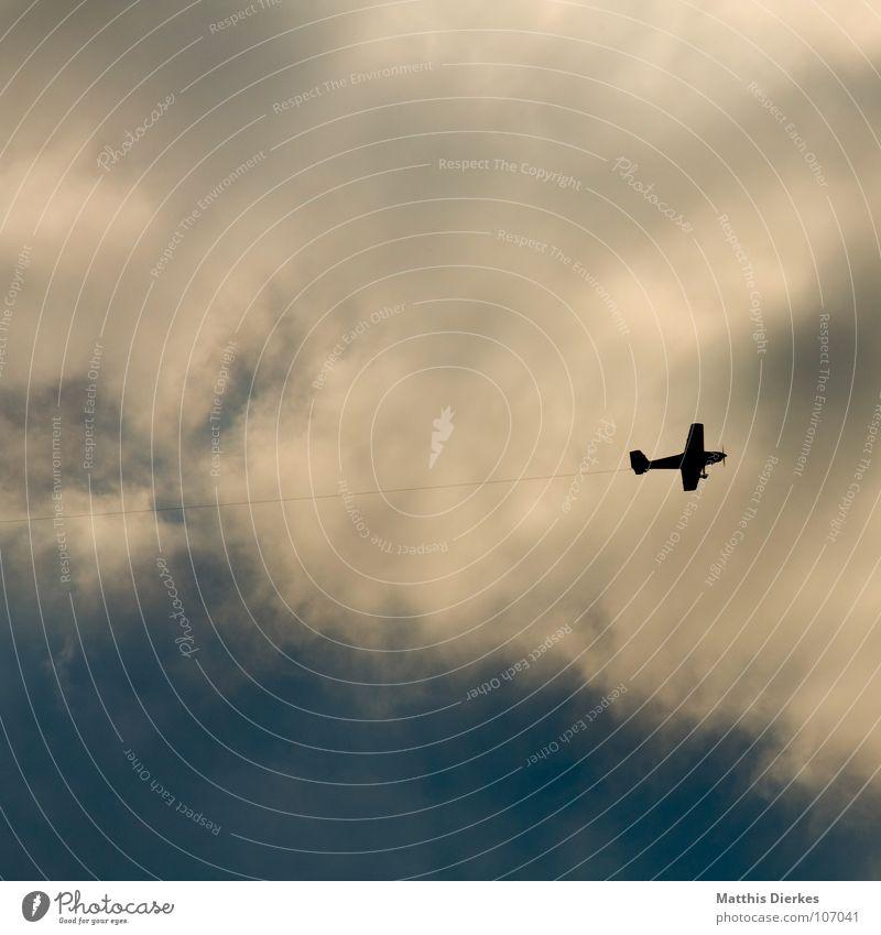 NACH RECHTS Ferien & Urlaub & Reisen Wolken Wege & Pfade Vogel klein Flugzeug Umwelt Erfolg Seil Luftverkehr gefährlich bedrohlich Flughafen Richtung