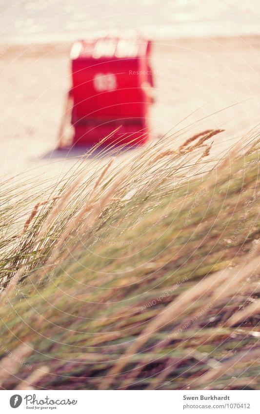 Hallo Sommer ;) Natur Ferien & Urlaub & Reisen Wasser Sonne Erholung Meer rot Landschaft Strand Ferne Umwelt Wärme Gras Küste Freiheit