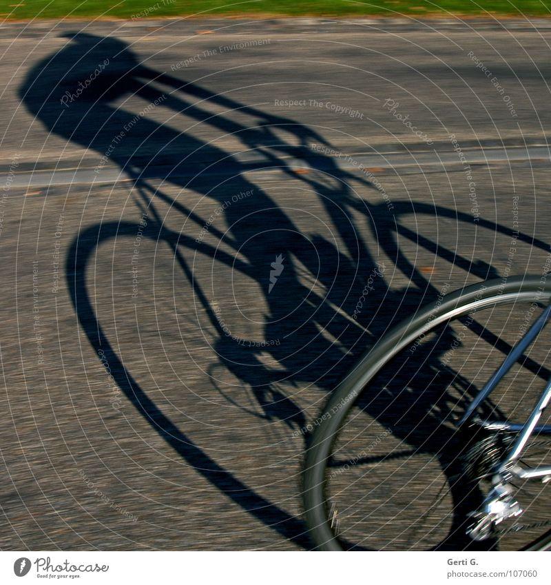 cycle race Mensch Mann Straße Sport Bewegung Wege & Pfade Fahrrad Kraft Geschwindigkeit Asphalt Konzentration Rad Dynamik sportlich Reifen