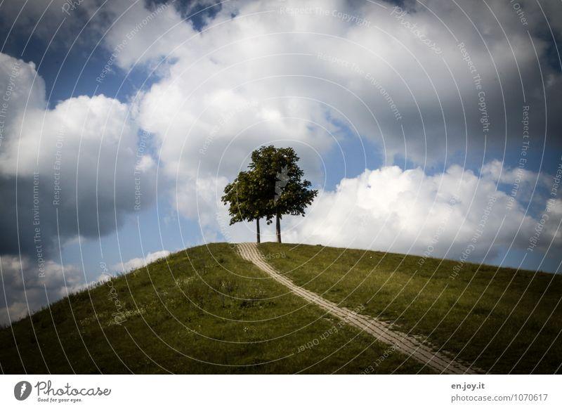 Bergfest Ausflug Umwelt Natur Landschaft Pflanze Himmel Wolken Sommer Baum Gras Park Wiese Hügel blau grün Frühlingsgefühle ruhig Wege & Pfade Karlsruhe