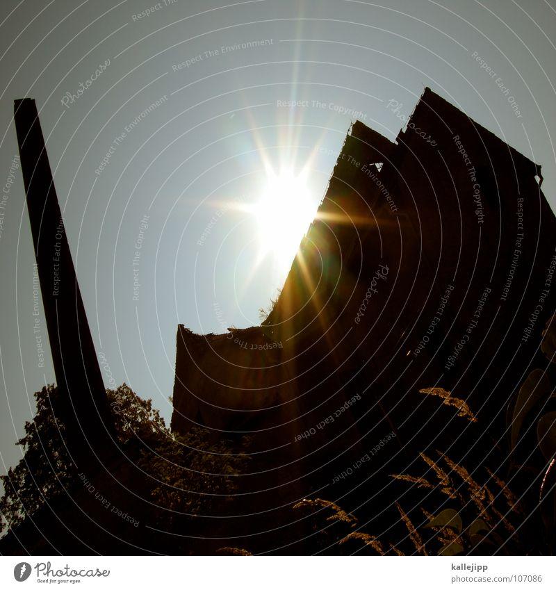wirtschaftskurve Sonne schwarz Einsamkeit dunkel Wiese Gras Traurigkeit Mauer Fabrik Dach kaputt verfallen Verfall Ruine DDR schäbig