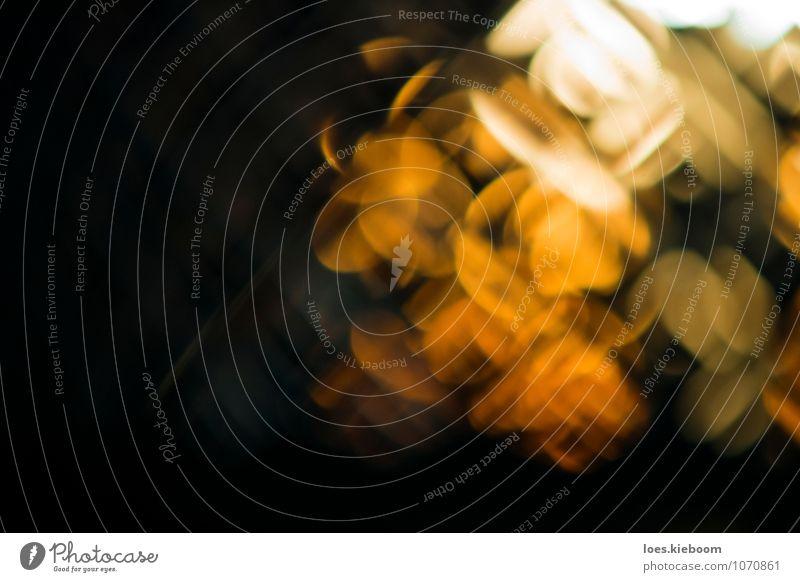light chaos Design Lampe Schreibtisch dunkel modern rebellisch trashig Stadt verrückt grün orange träumen Ellipsen Hintergrundbild abstrackt desktop Lichtspiel