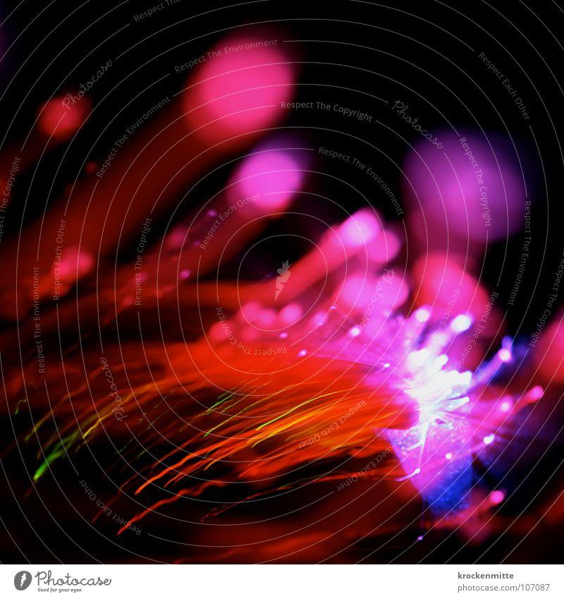 Funkensonntag rot Farbe Lampe Linie rosa Nebel Kreis Streifen