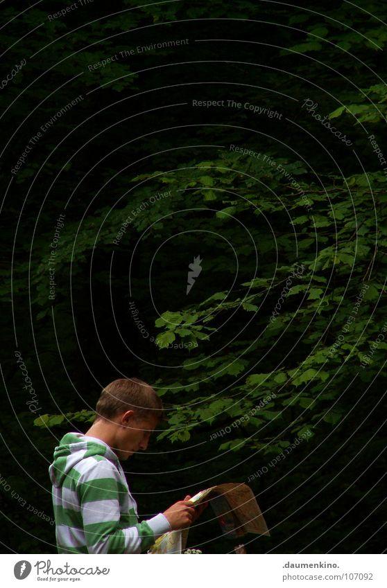 skywalker Mann Hand Baum Blatt Einsamkeit Wald Denken Suche planen Ohr festhalten Pullover Hals Landkarte gestreift