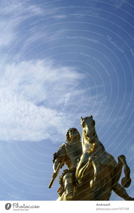 ..ich war so hoch auf der Leiter... Kunst Gold Pferd Macht Dresden stark Statue Denkmal historisch König Sachsen Reiter Juwelier