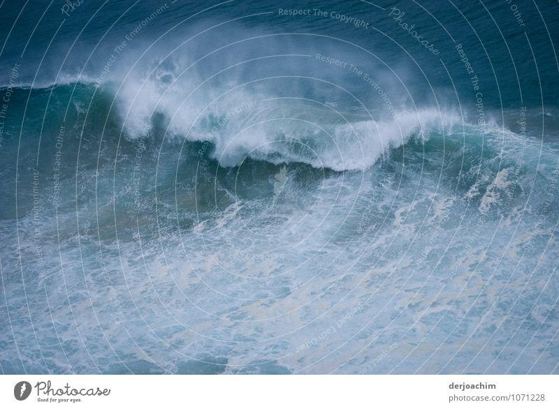 Zyklon Ausläufer grün Wasser Sommer Meer Freude Umwelt Küste außergewöhnlich Angst Kraft Wellen fantastisch nass beobachten einzigartig entdecken