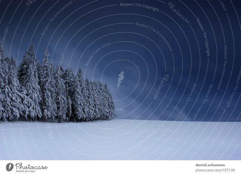 Weihnachtskarte 1 Natur weiß Ferien & Urlaub & Reisen Winter Einsamkeit Wolken Wald dunkel Schnee Deutschland Wetter Hintergrundbild Freizeit & Hobby wandern bedrohlich Tanne