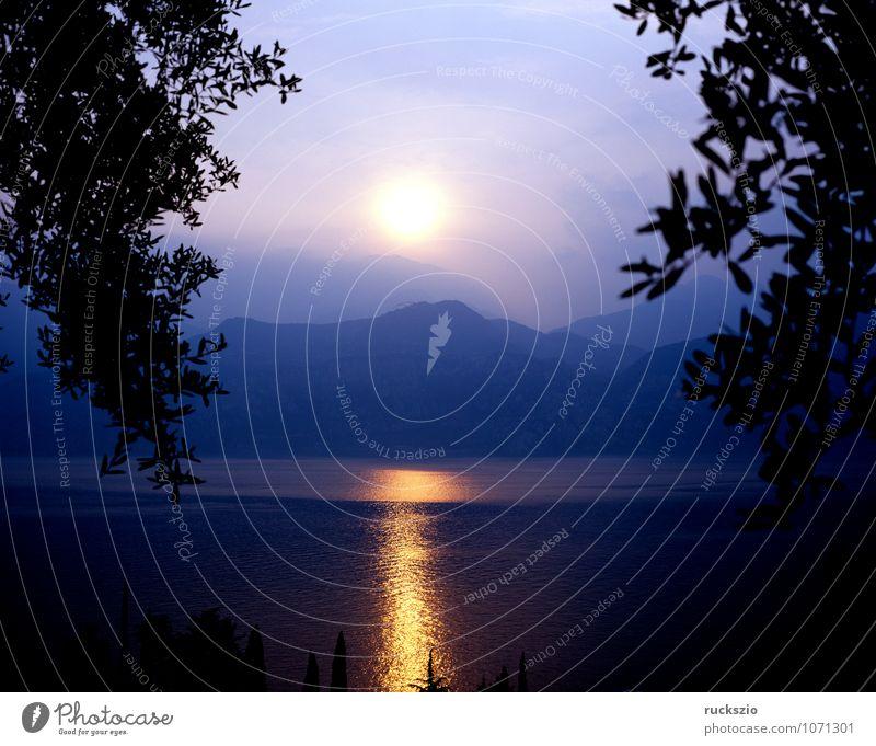 Abendstimmung; Gardasee, Italien Wasser Sonne Landschaft Wolken Berge u. Gebirge See Stimmung Romantik Alpen Zweig Abenddämmerung Dunst Westen Abendsonne